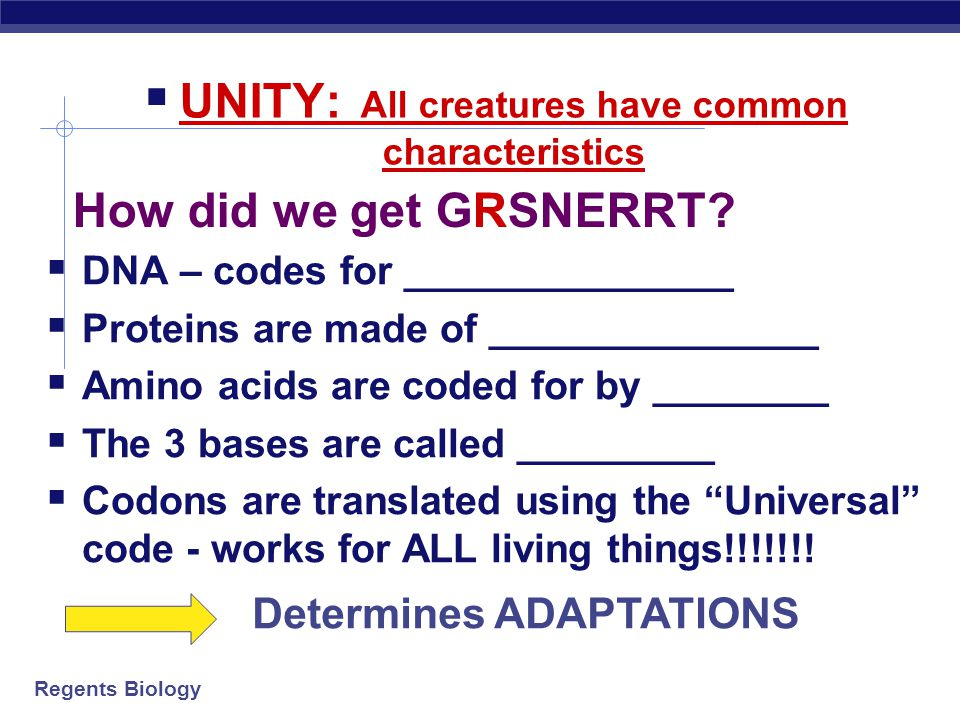 UNITY: All creatures have common characteristics