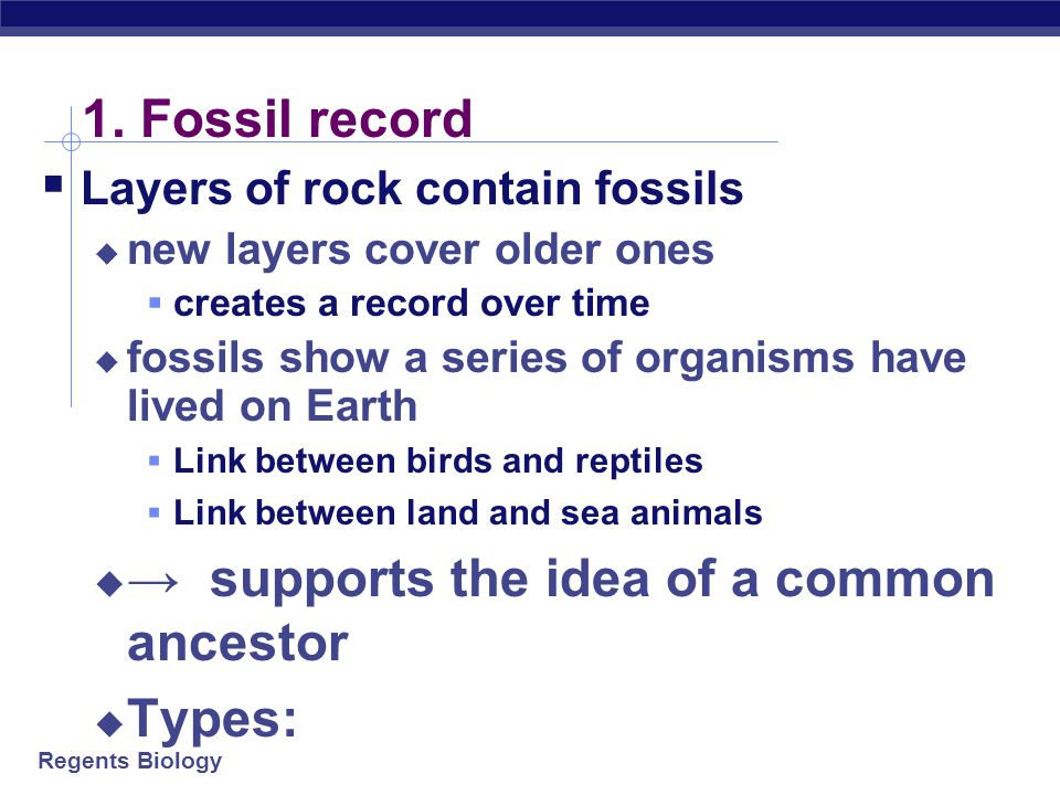 → supports the idea of a common ancestor Types: