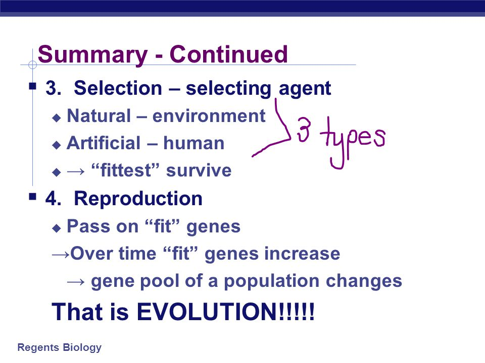 Summary - Continued That is EVOLUTION!!!!!