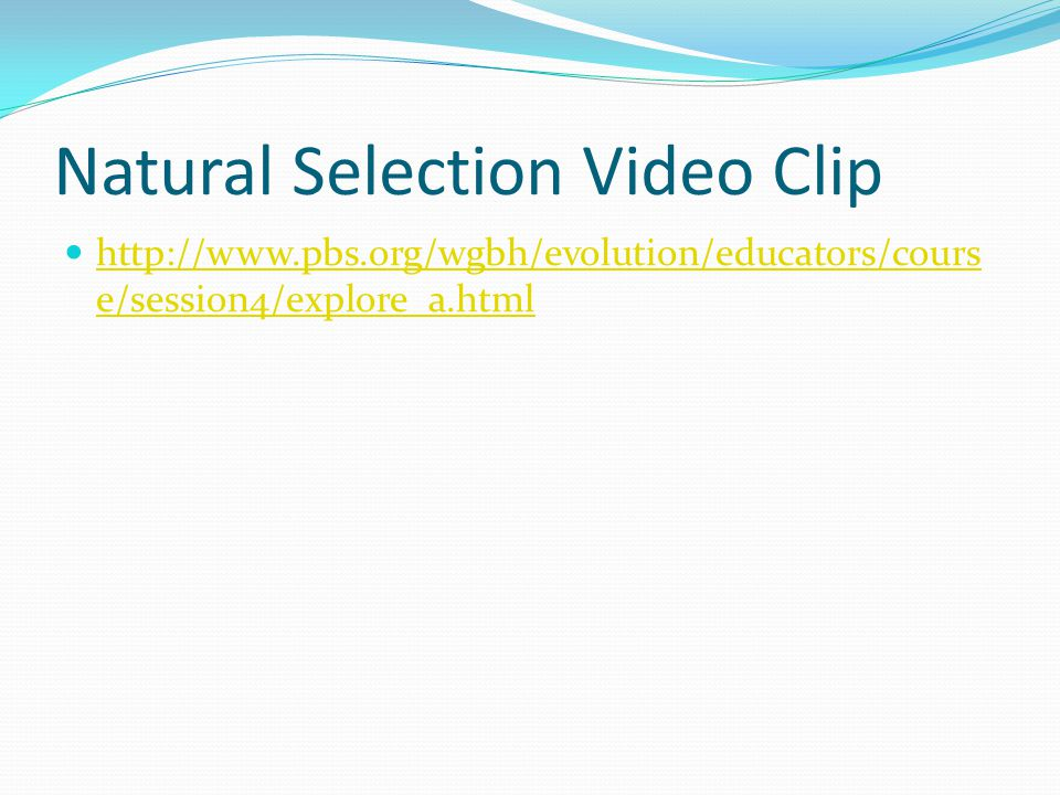 Natural Selection Video Clip