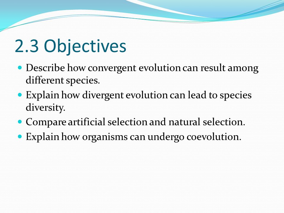 2.3 Objectives Describe how convergent evolution can result among different species. Explain how divergent evolution can lead to species diversity.