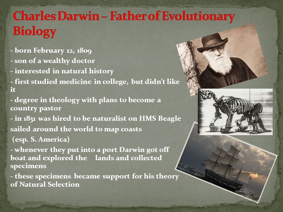 Charles Darwin – Father of Evolutionary Biology