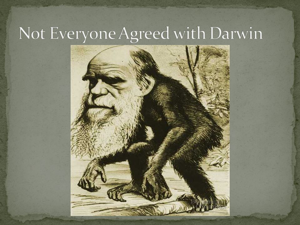 Not Everyone Agreed with Darwin