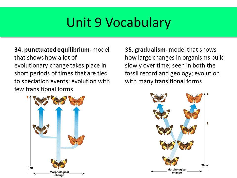 Unit 9 Vocabulary