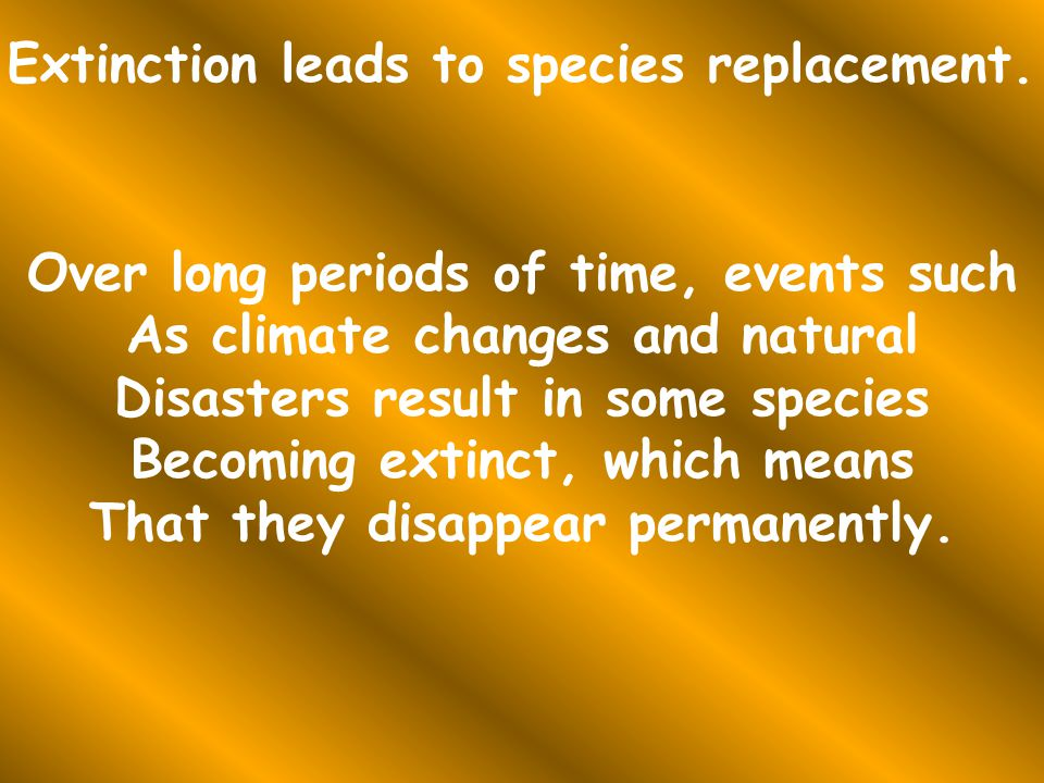 Extinction leads to species replacement.
