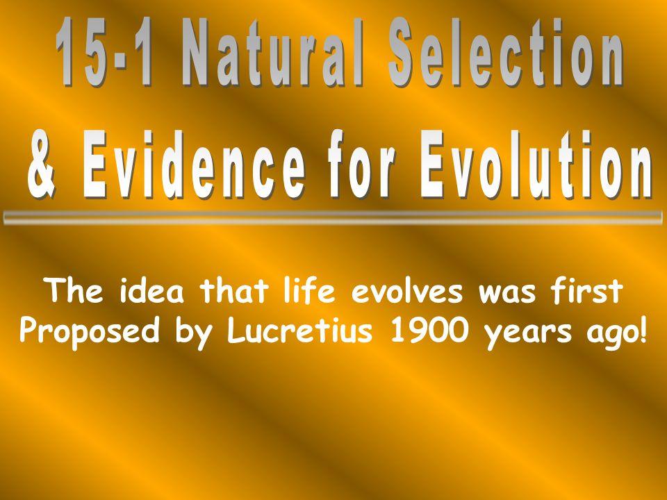 & Evidence for Evolution