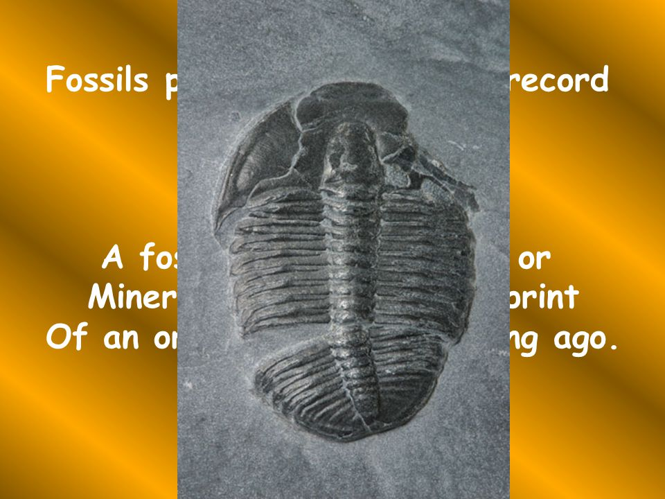 Fossils provide an objective record Of evolution.