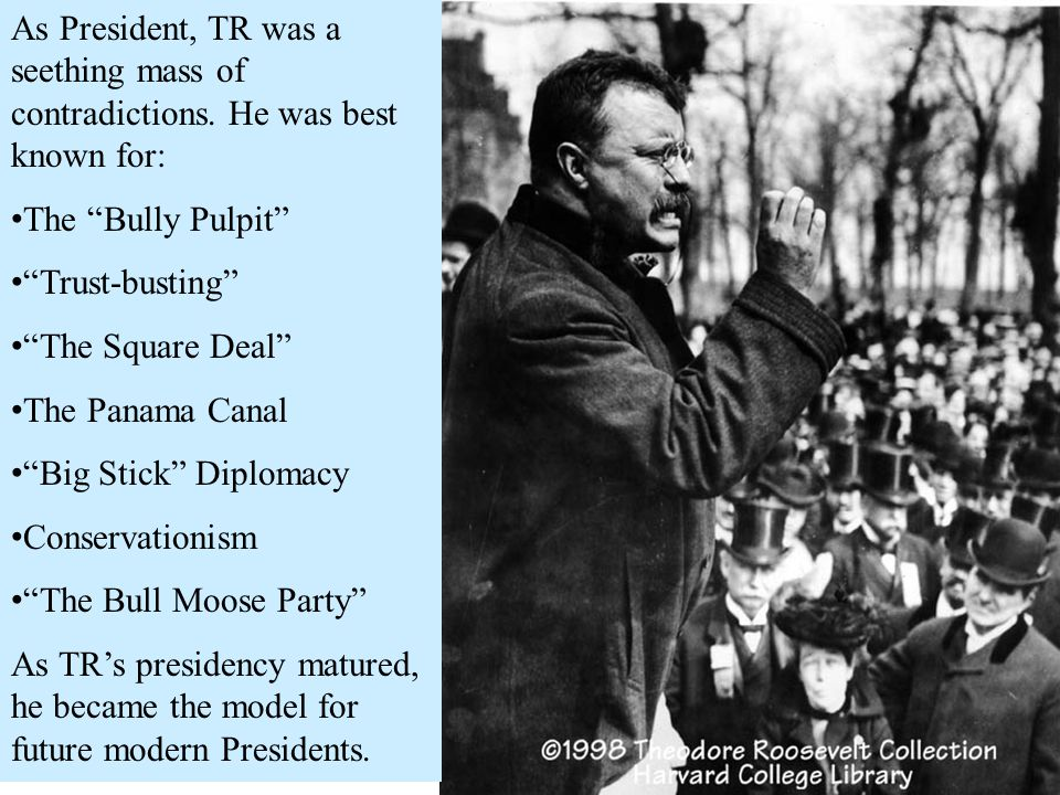 As President, TR was a seething mass of contradictions