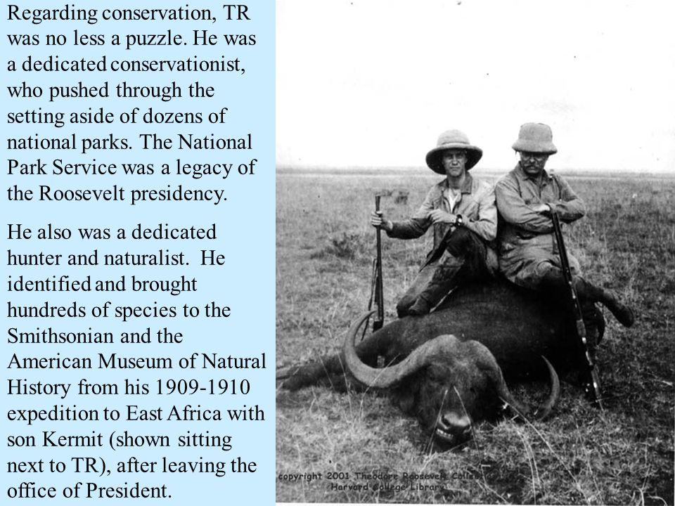 Regarding conservation, TR was no less a puzzle