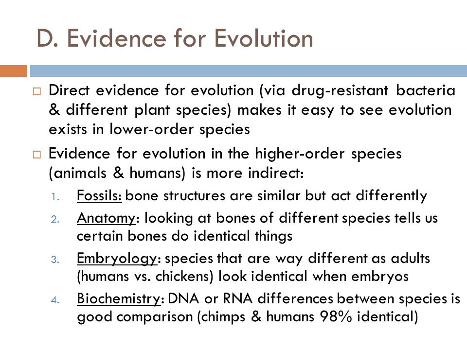 D. Evidence for Evolution