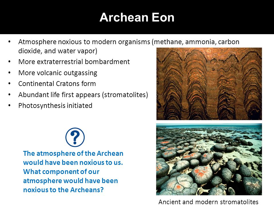 Archean Eon Atmosphere noxious to modern organisms (methane, ammonia, carbon dioxide, and water vapor)