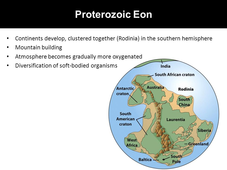 Proterozoic Eon Continents develop, clustered together (Rodinia) in the southern hemisphere. Mountain building.