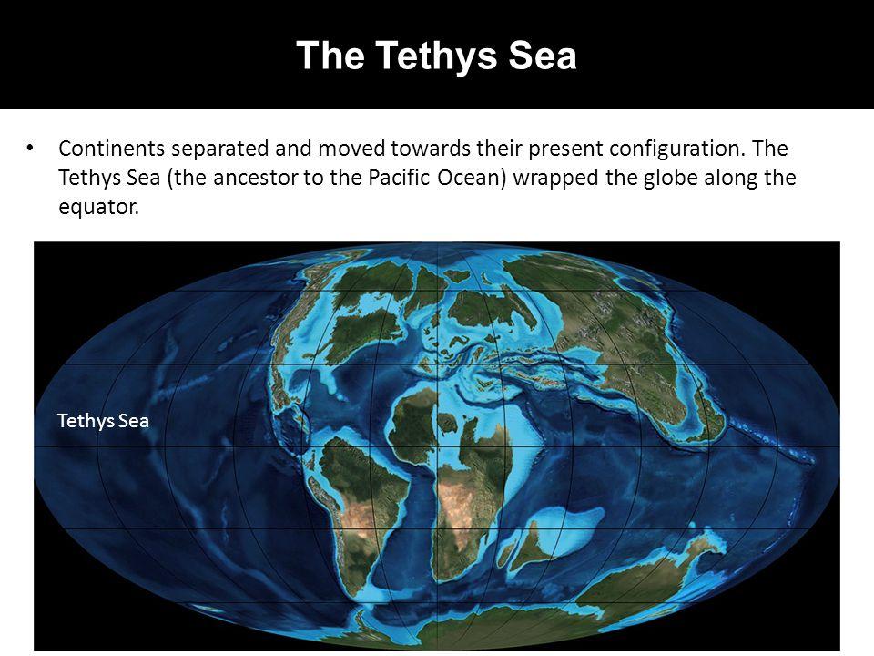 The Tethys Sea