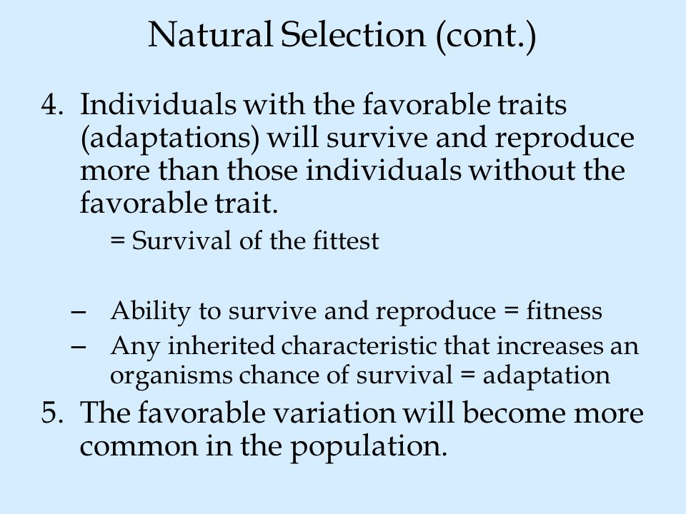 Natural Selection (cont.)