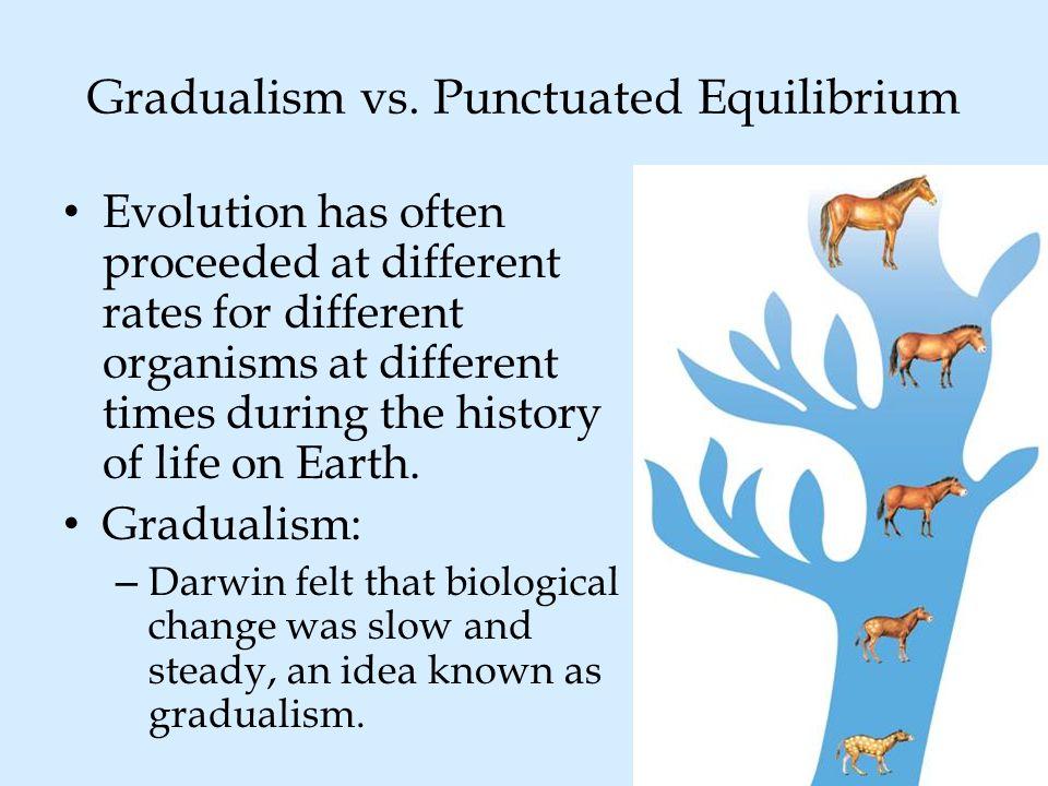 Gradualism vs. Punctuated Equilibrium