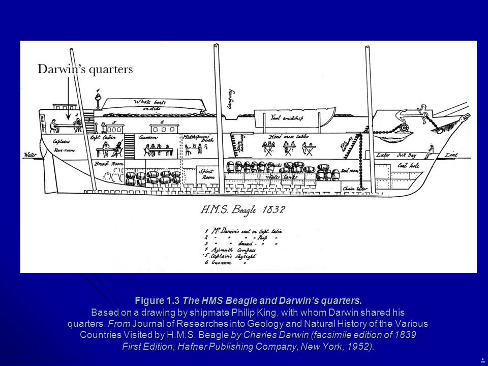 Figure 1. 3 The HMS Beagle and Darwin's quarters