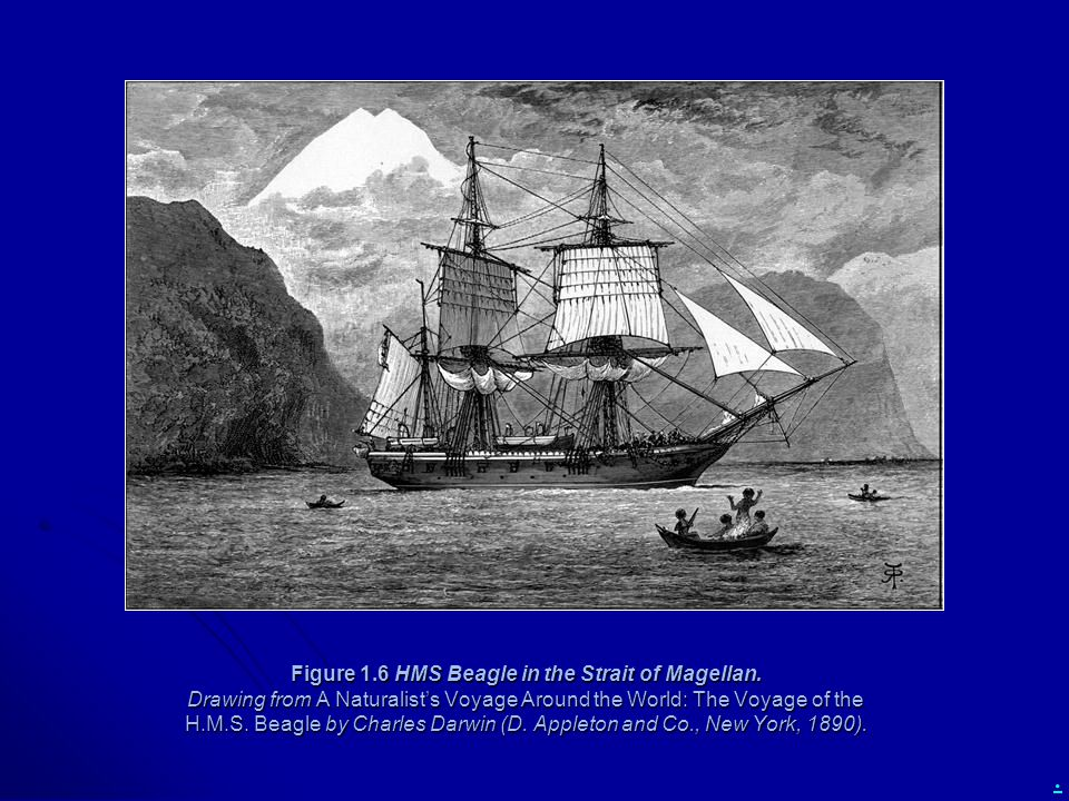 Figure 1. 6 HMS Beagle in the Strait of Magellan