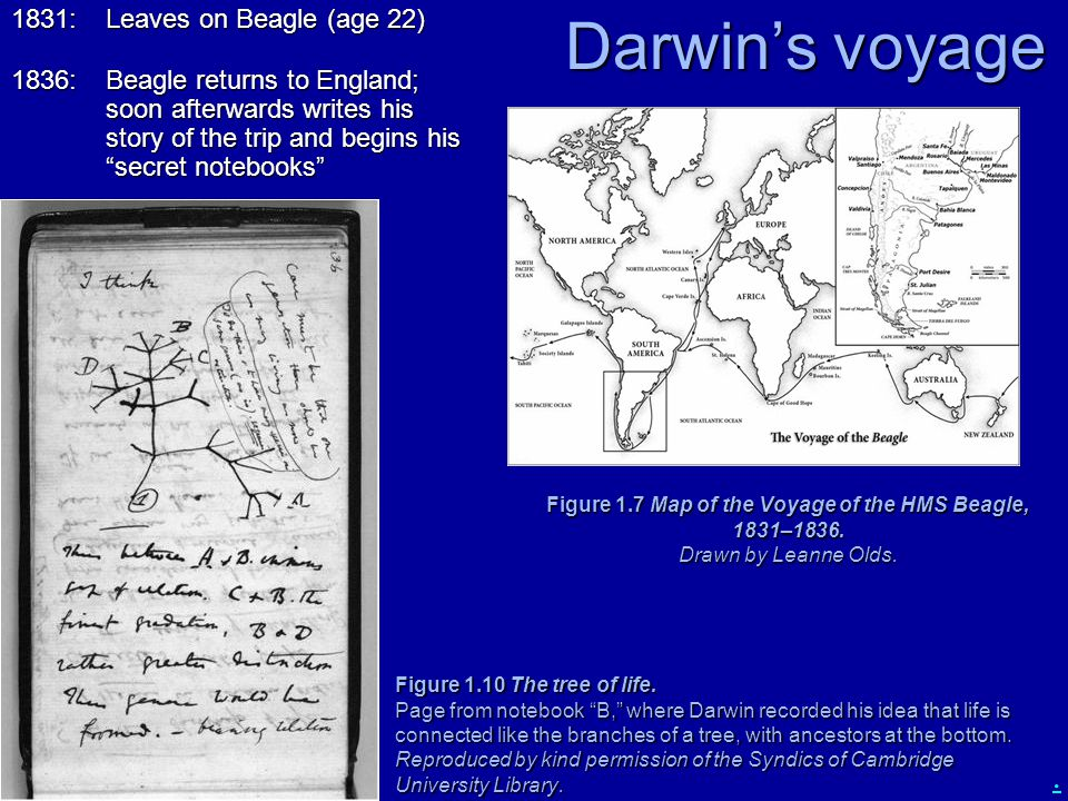 Darwin's voyage 1831: Leaves on Beagle (age 22)