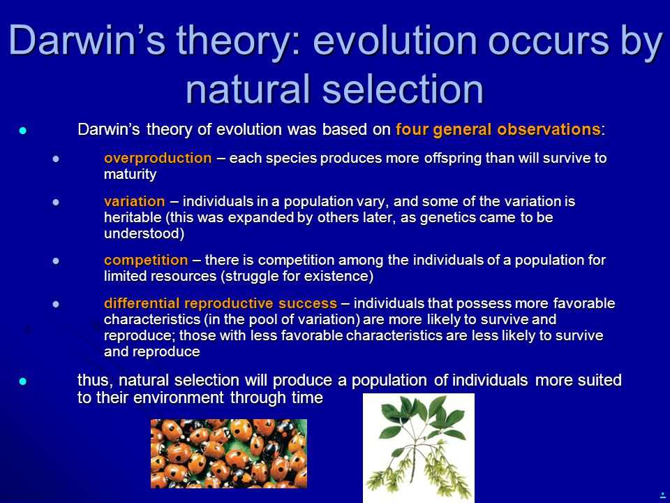 Darwin's theory: evolution occurs by natural selection