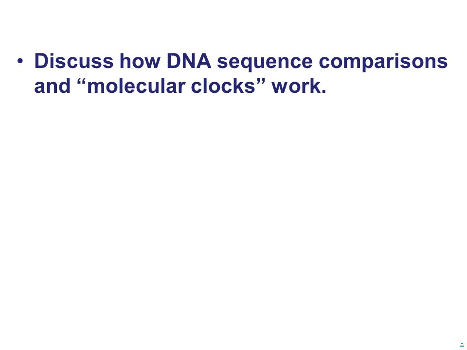Discuss how DNA sequence comparisons and molecular clocks work.