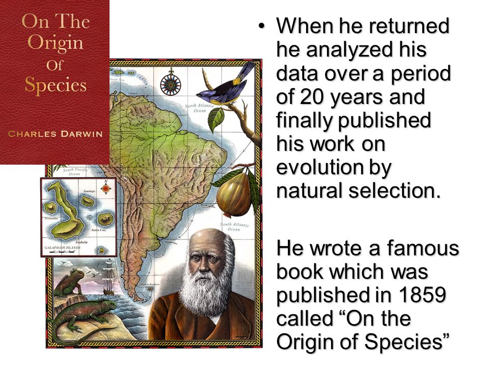 When he returned he analyzed his data over a period of 20 years and finally published his work on evolution by natural selection.