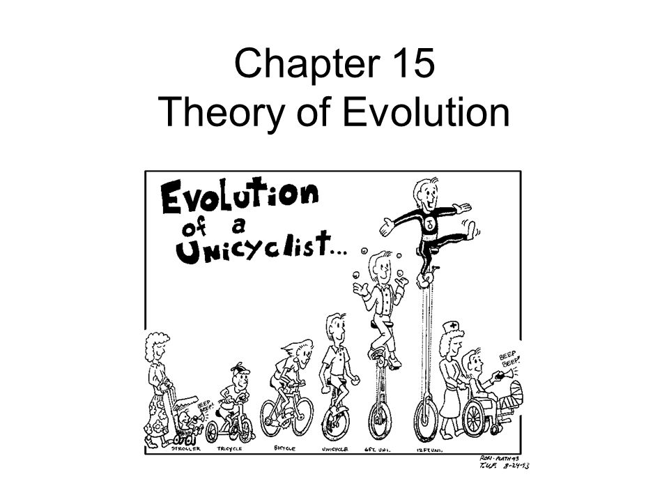 Chapter 15 Theory of Evolution
