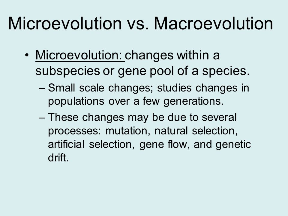 Microevolution vs. Macroevolution