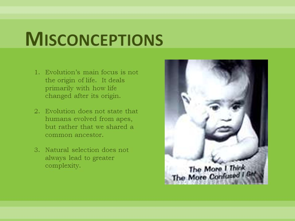 Misconceptions Evolution's main focus is not the origin of life. It deals primarily with how life changed after its origin.