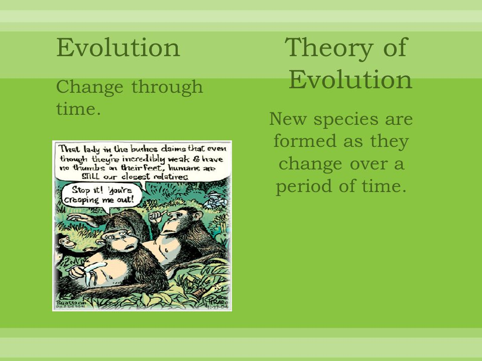 New species are formed as they change over a period of time.