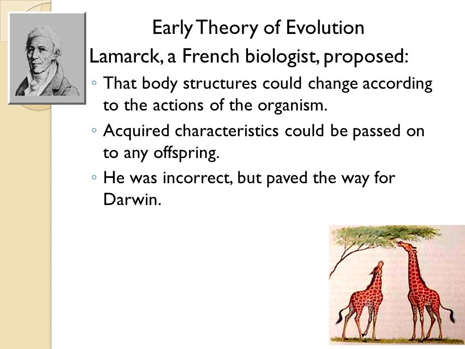 Early Theory of Evolution
