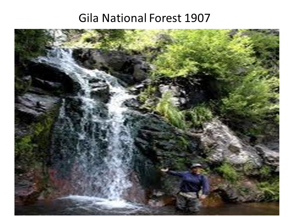 Gila National Forest 1907