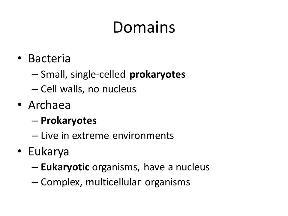 Domains Bacteria Archaea Eukarya Small, single-celled prokaryotes