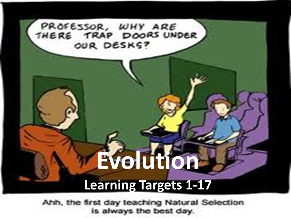 Evolution Learning Targets 1-17
