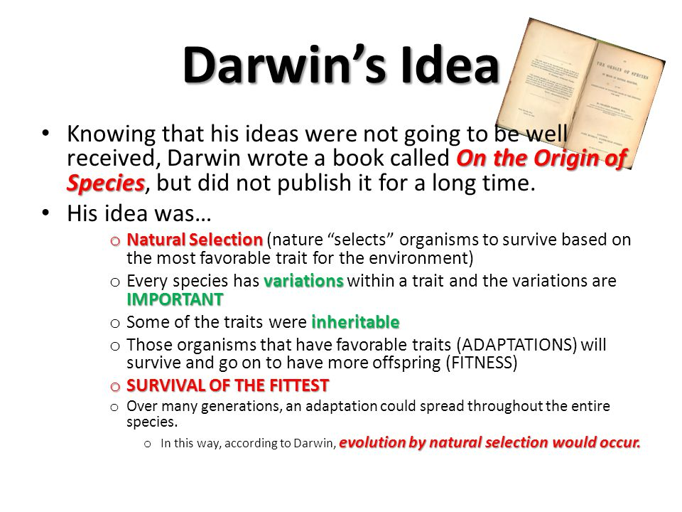 Darwin's Idea