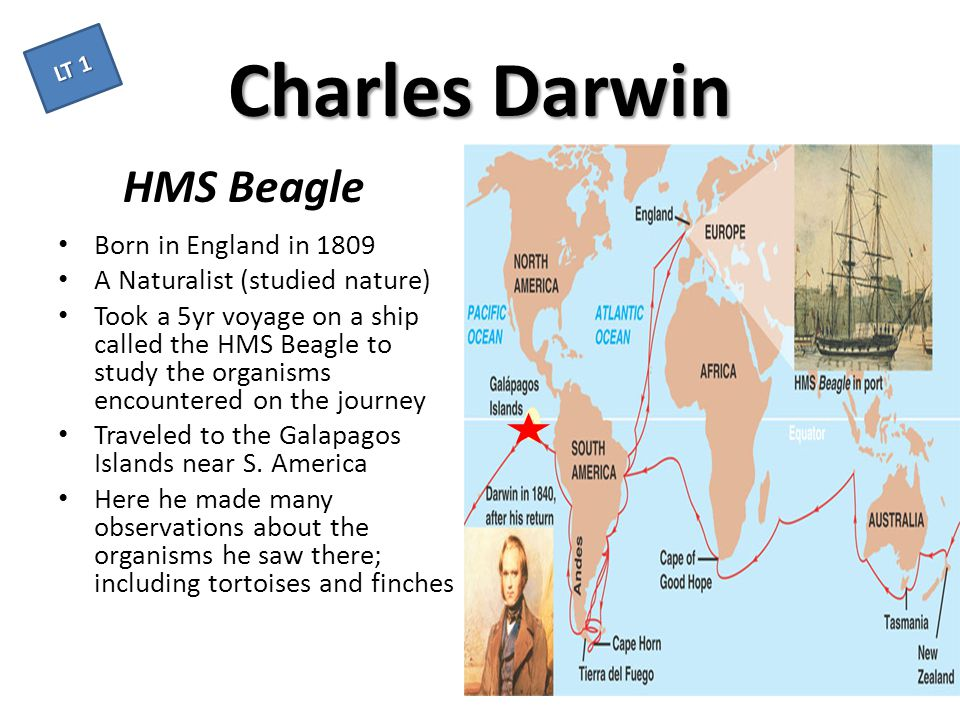 Charles Darwin HMS Beagle Born in England in 1809