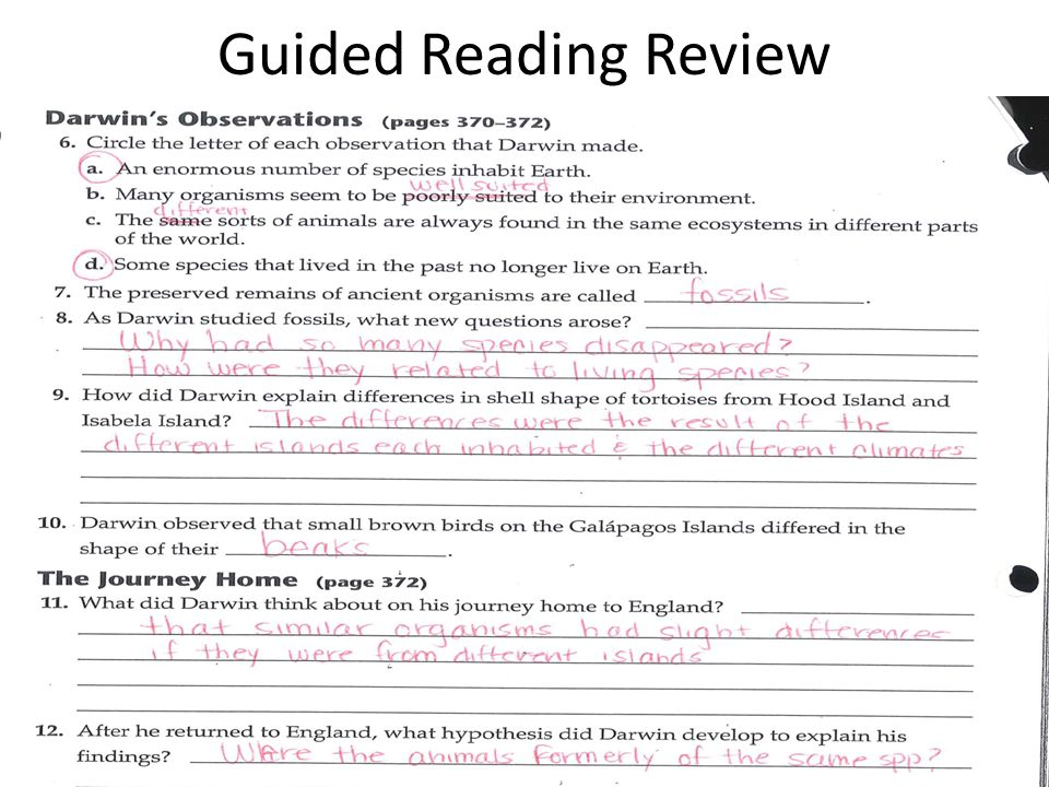 Guided Reading Review