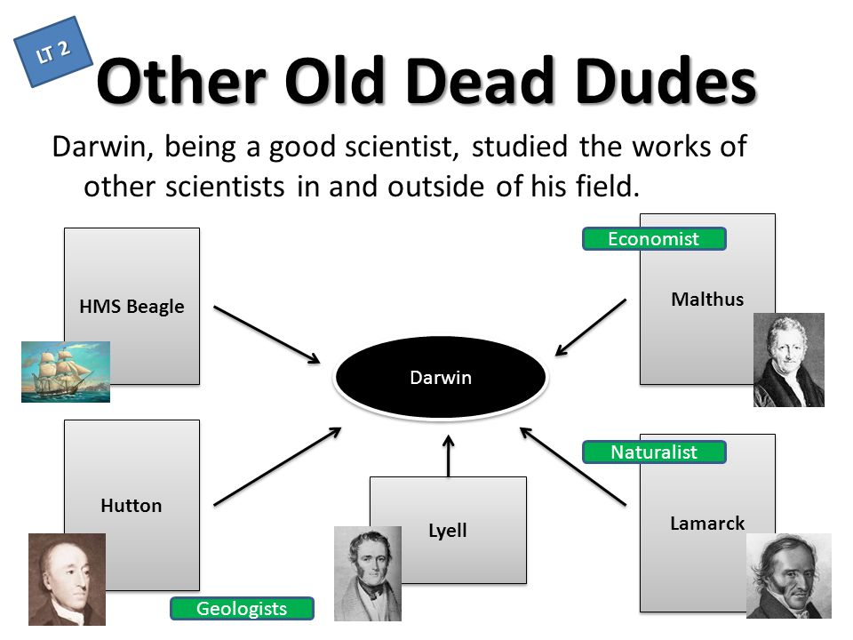 LT 2 Other Old Dead Dudes. Darwin, being a good scientist, studied the works of other scientists in and outside of his field.