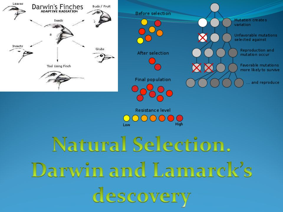 Darwin and Lamarck's descovery