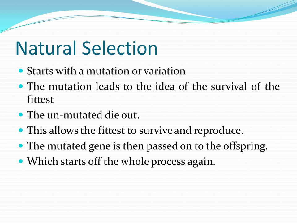 Natural Selection Starts with a mutation or variation