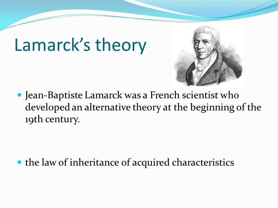 Lamarck's theory Jean-Baptiste Lamarck was a French scientist who developed an alternative theory at the beginning of the 19th century.