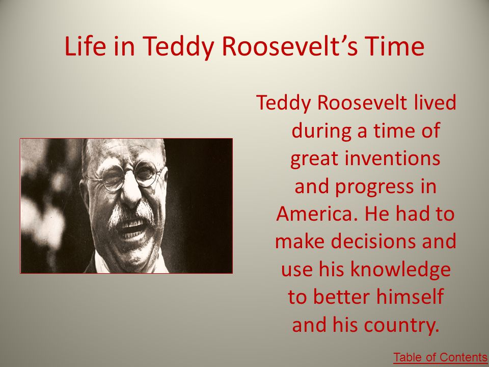 Life in Teddy Roosevelt's Time