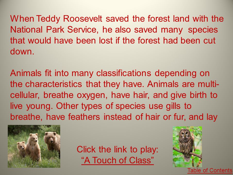 When Teddy Roosevelt saved the forest land with the National Park Service, he also saved many species that would have been lost if the forest had been cut down.