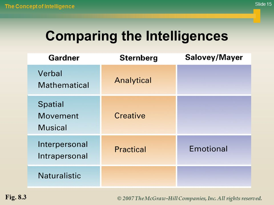 Comparing the Intelligences