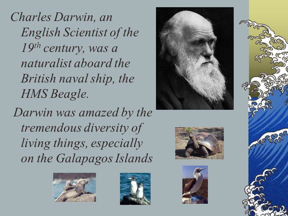 Charles Darwin, an English Scientist of the 19th century, was a naturalist aboard the British naval ship, the HMS Beagle.