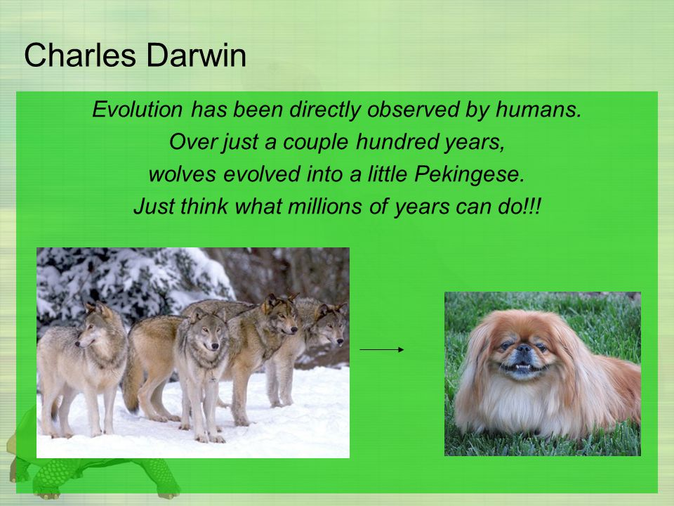 Charles Darwin Evolution has been directly observed by humans.