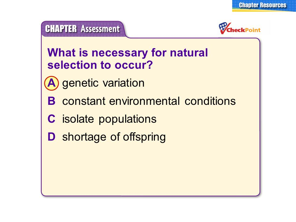 What is necessary for natural selection to occur