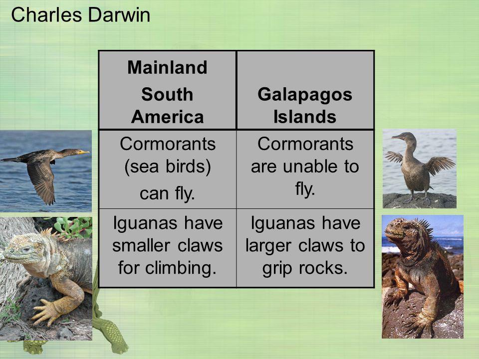 Charles Darwin Mainland South America Galapagos Islands