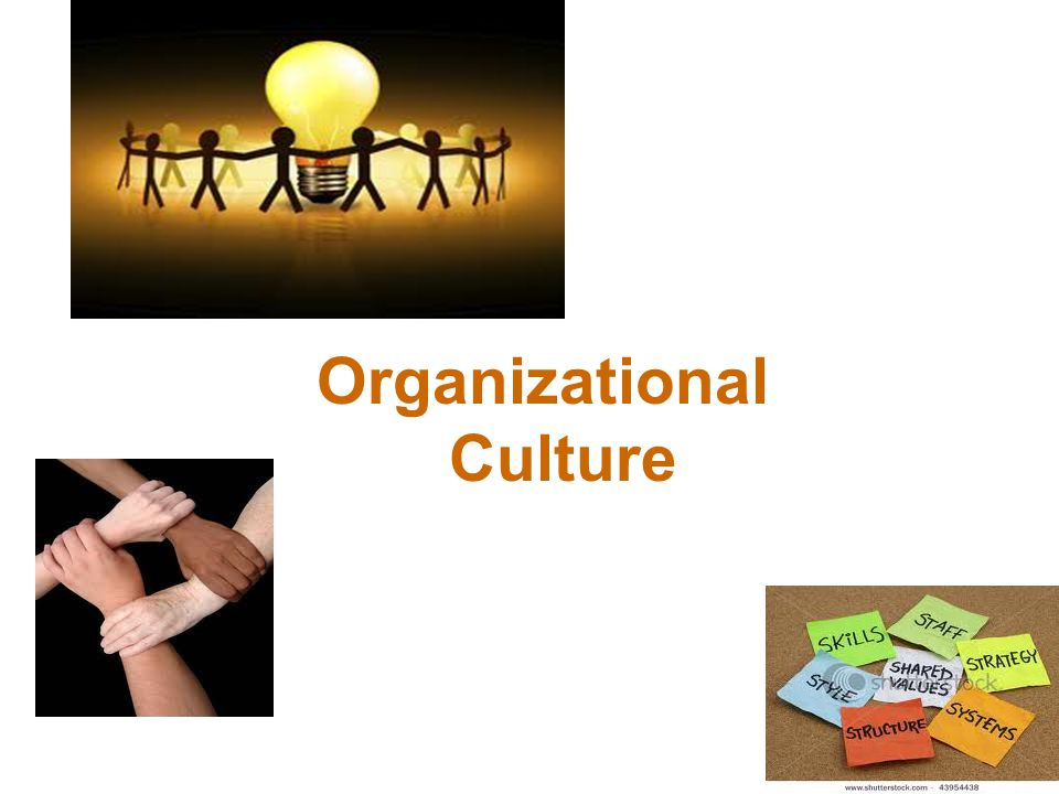 What Is Organizational Culture