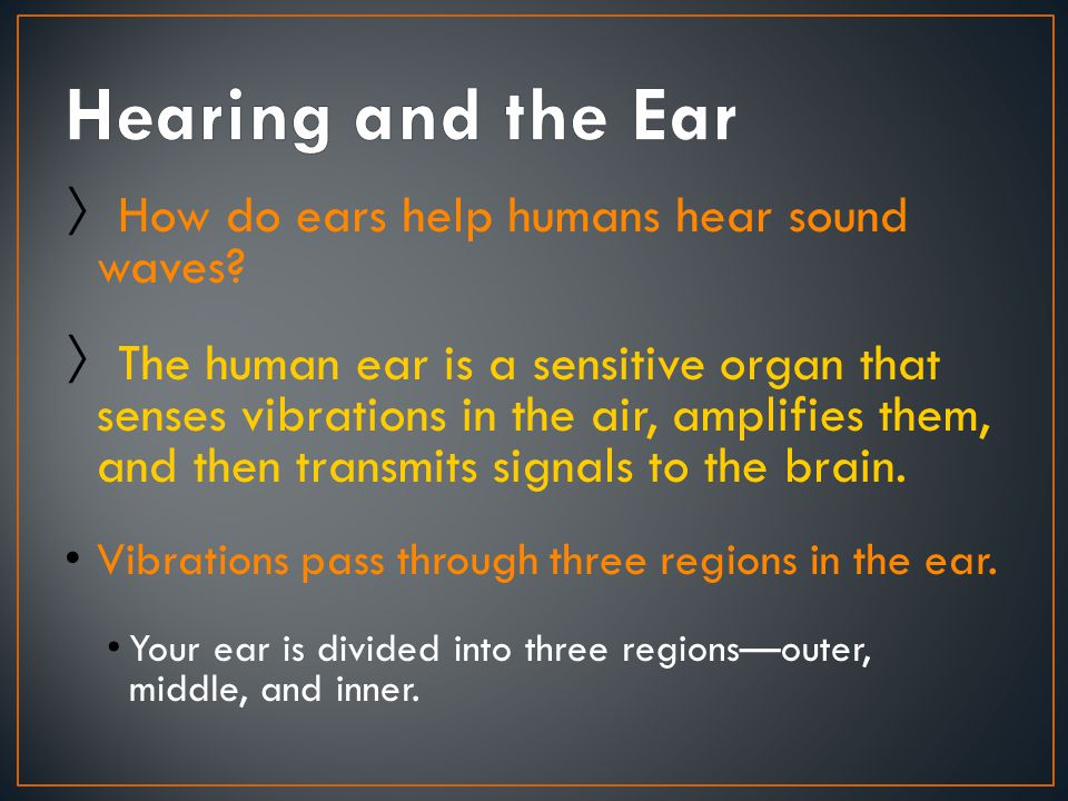 Hearing and the Ear How do ears help humans hear sound waves