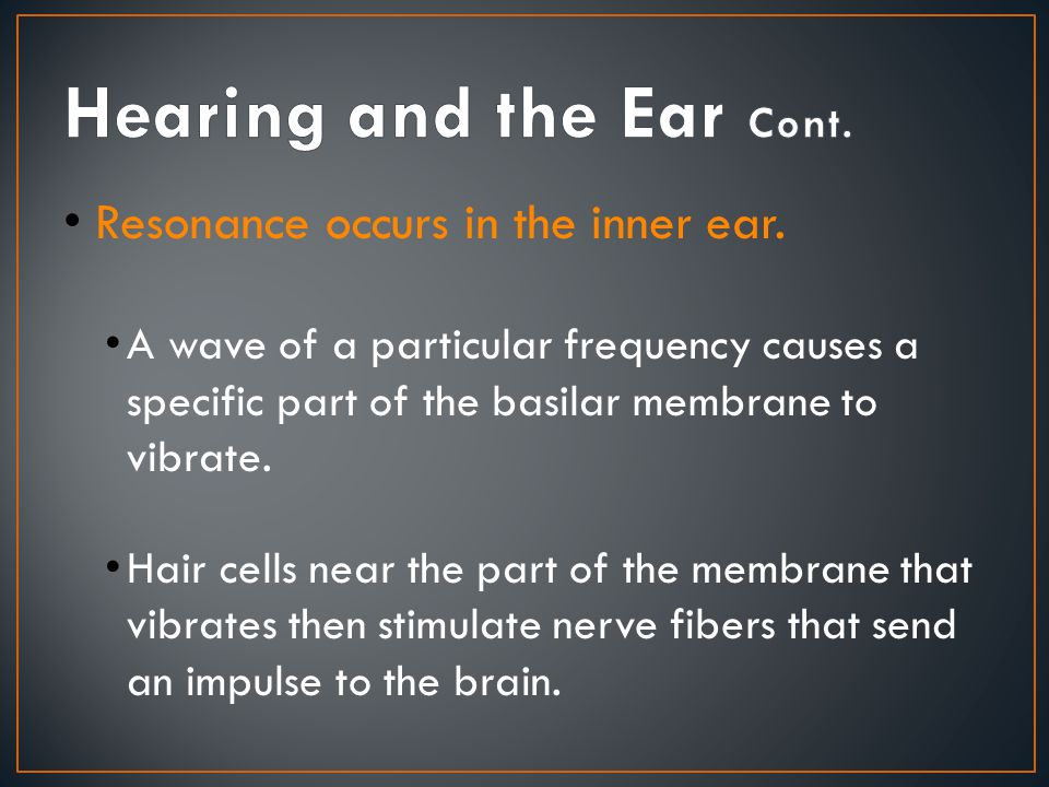Hearing and the Ear Cont.